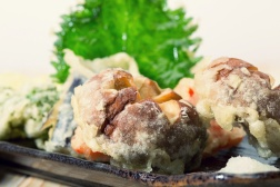 tempura-zoom